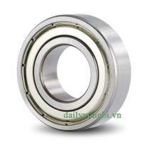 Vòng bi bạc đạn NTN 6019